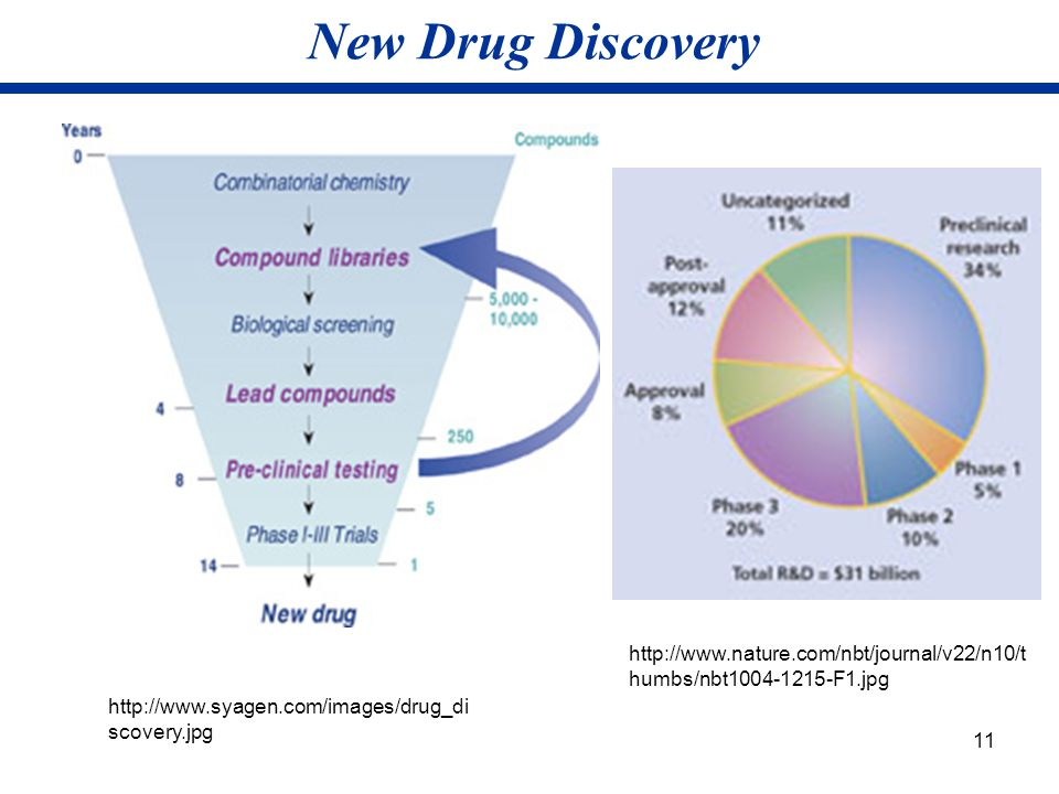 New Drug Discovery Pipeline-indication of the company's potential for profit. Usual period for putting drugs on the market is 14 years.
