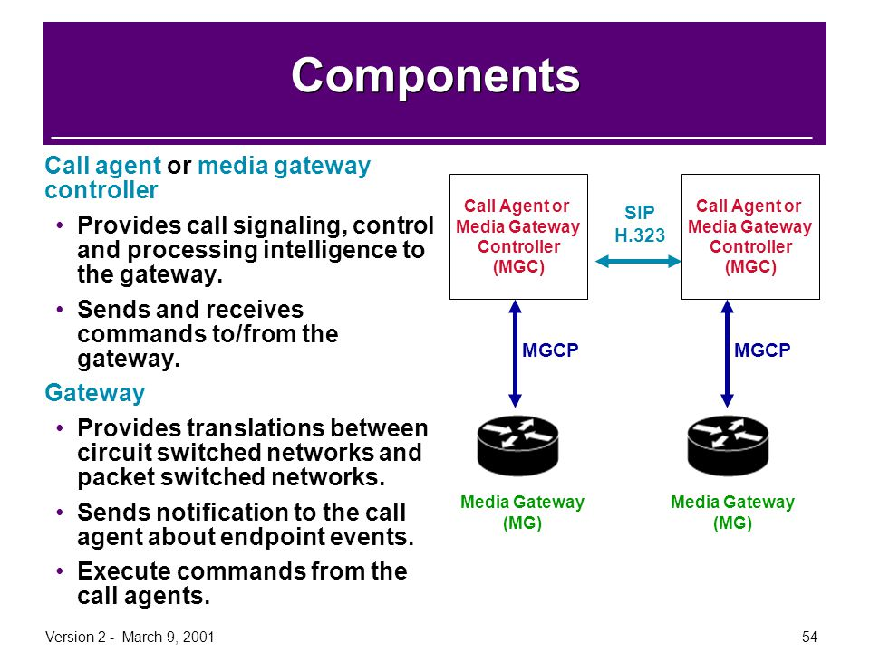 Components Call agent or media gateway controller
