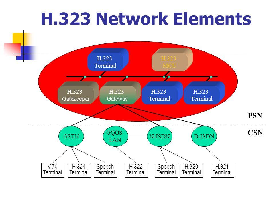 H.323 Network Elements PSN CSN H.323 Terminal H.323 MCU