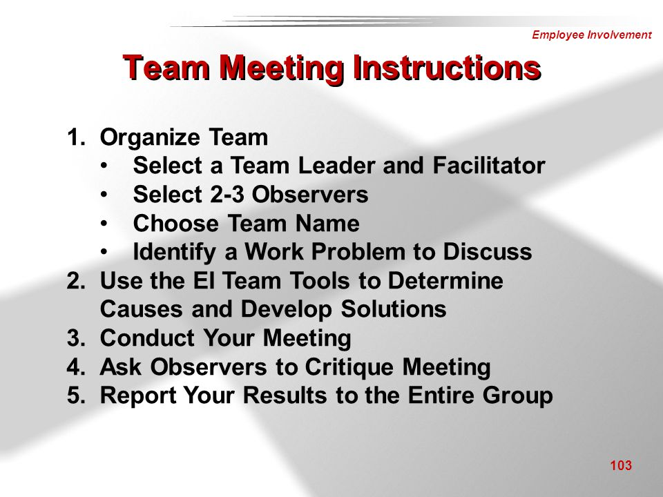 Team Meeting Instructions