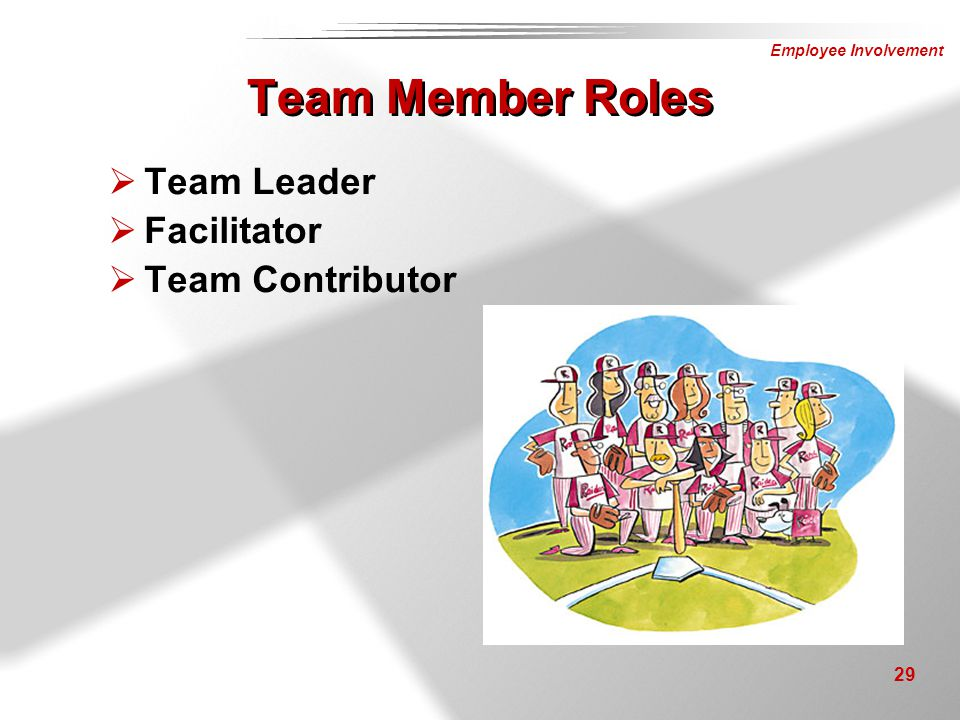 Team Member Roles Team Leader Facilitator Team Contributor