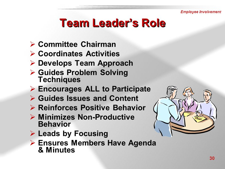 Team Leader's Role Committee Chairman Coordinates Activities