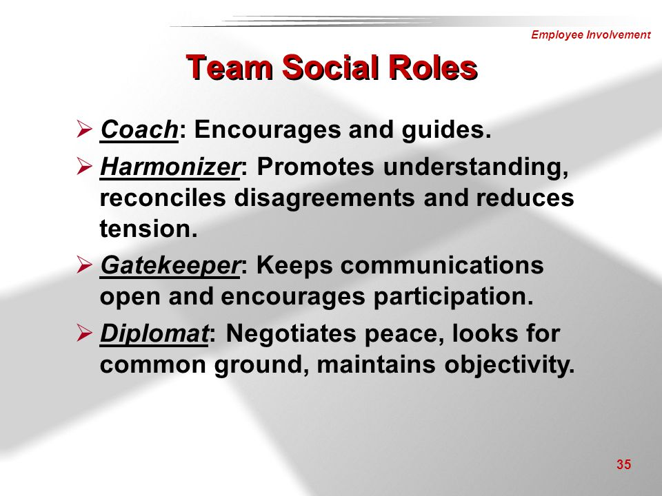 Team Social Roles Coach: Encourages and guides.