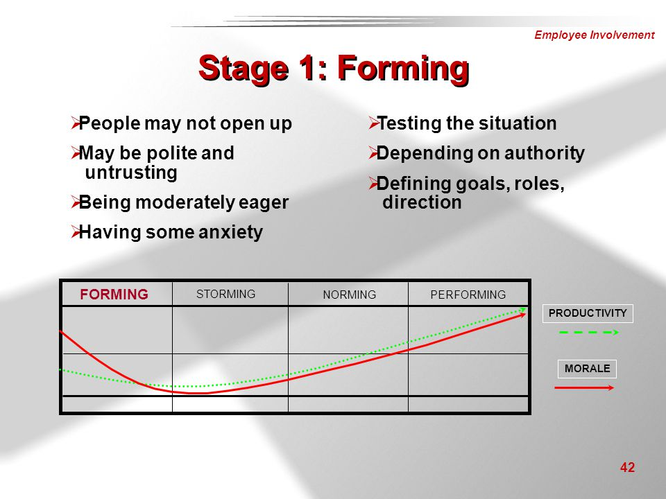 Stage 1: Forming People may not open up May be polite and untrusting