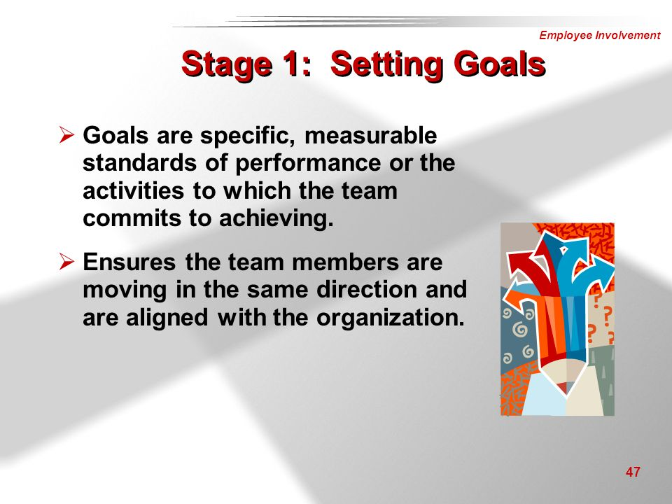Stage 1: Setting Goals Goals are specific, measurable standards of performance or the activities to which the team commits to achieving.
