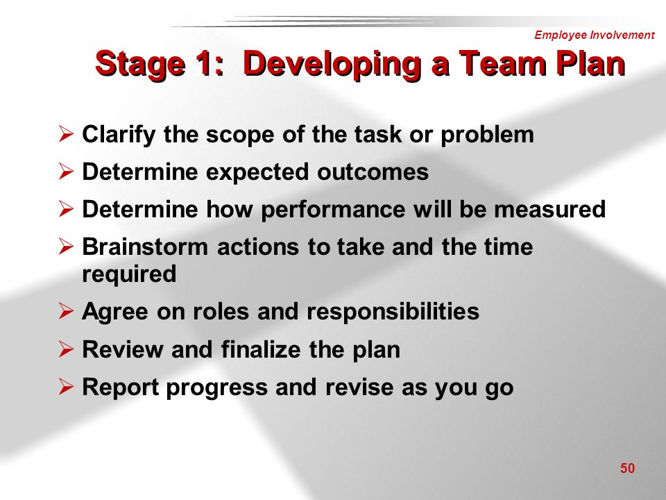 Stage 1: Developing a Team Plan