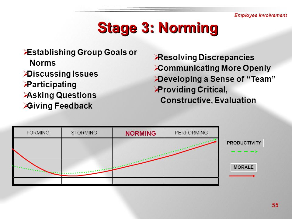Stage 3: Norming Establishing Group Goals or Norms