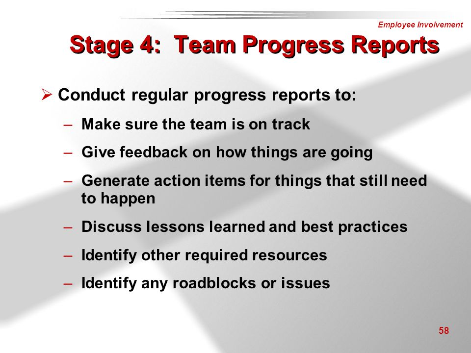 Stage 4: Team Progress Reports