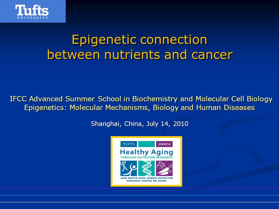 Epigenetic connection between nutrients and cancer