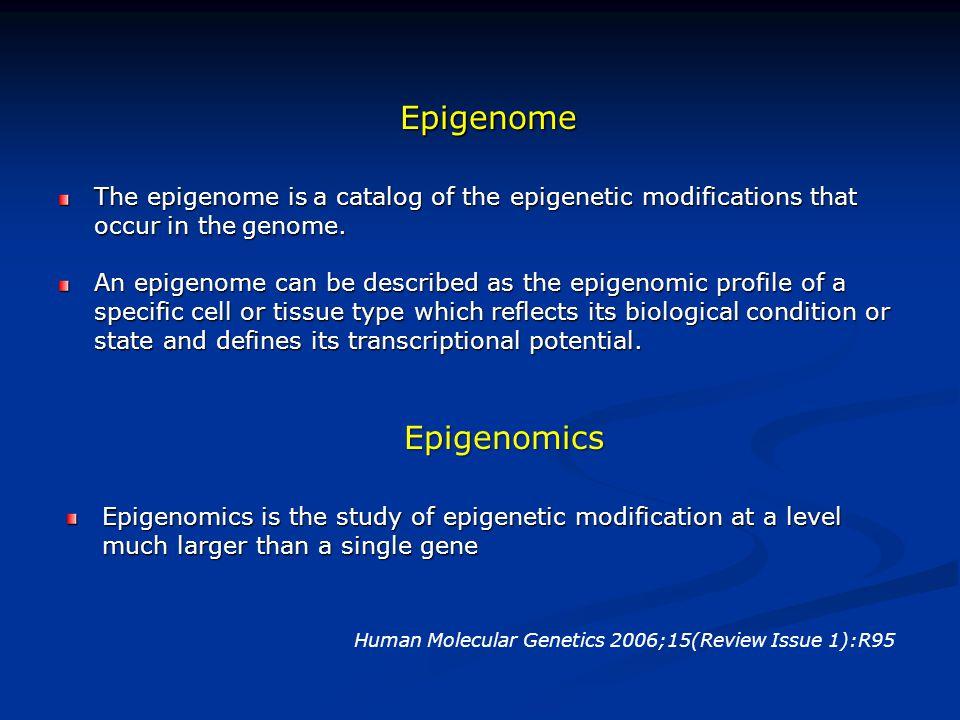Epigenome Epigenomics
