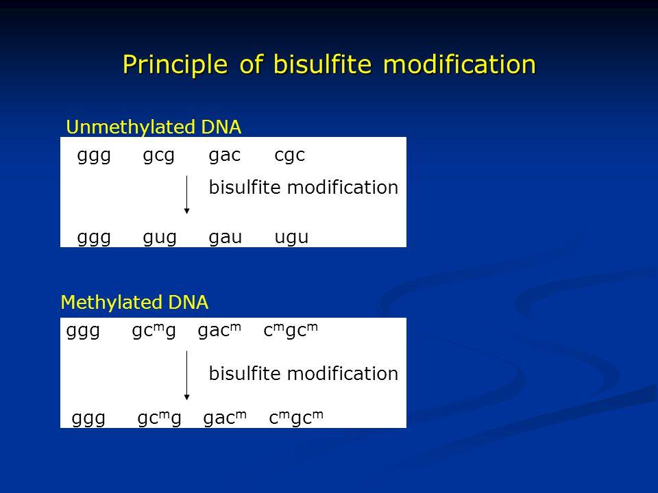 Principle of bisulfite modification