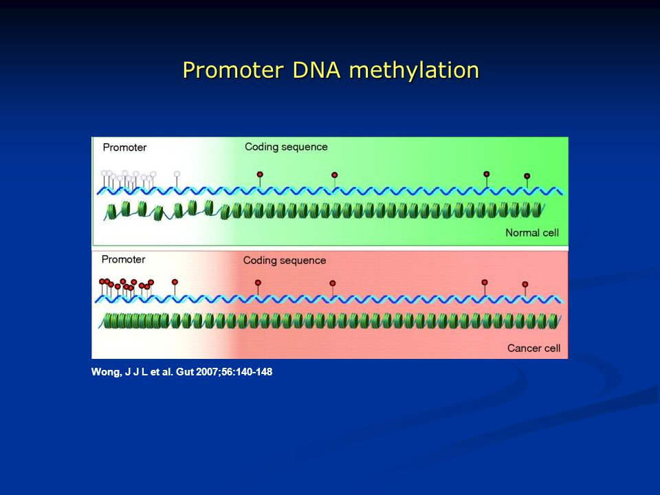 Promoter DNA methylation