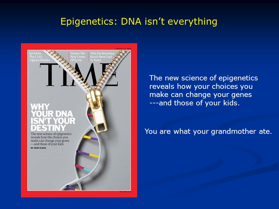 Epigenetics: DNA isn't everything