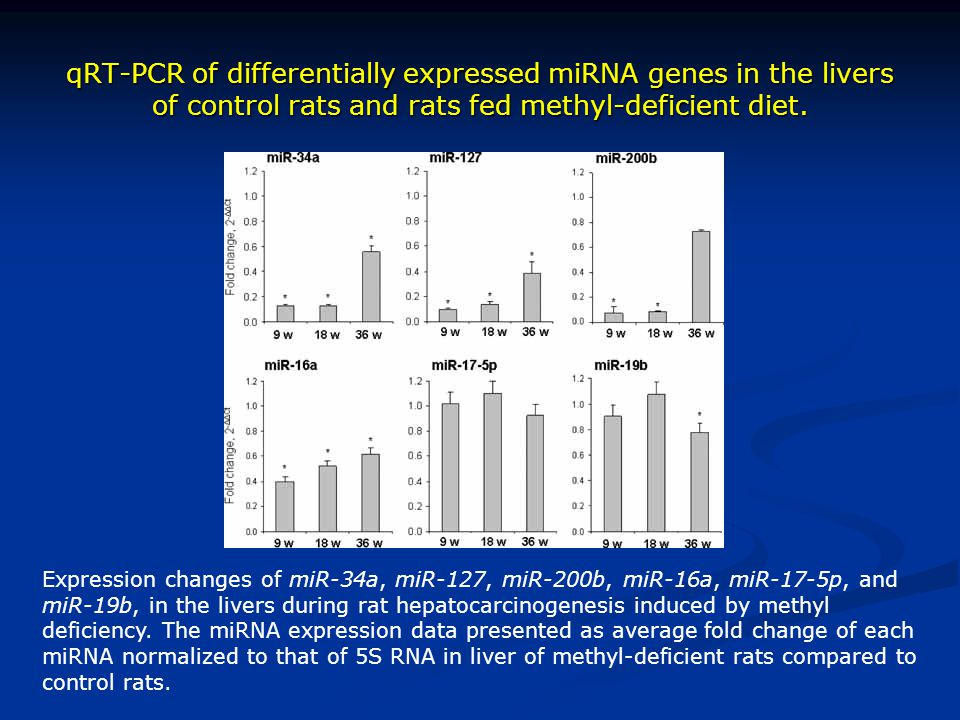 qRT-PCR of differentially expressed miRNA genes in the livers of control rats and rats fed methyl-deficient diet.