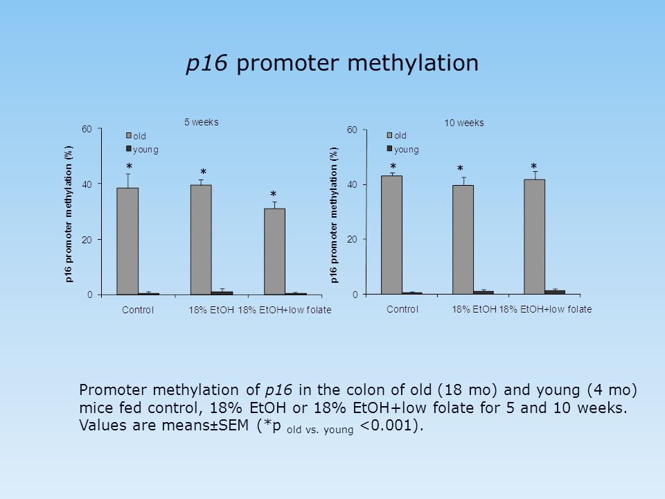 p16 promoter methylation