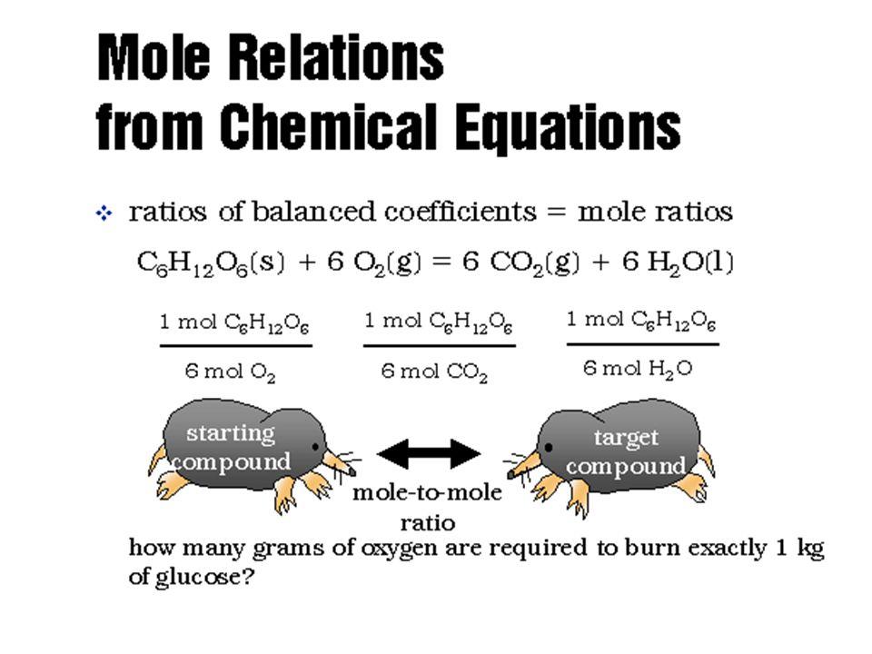 Mole Relations