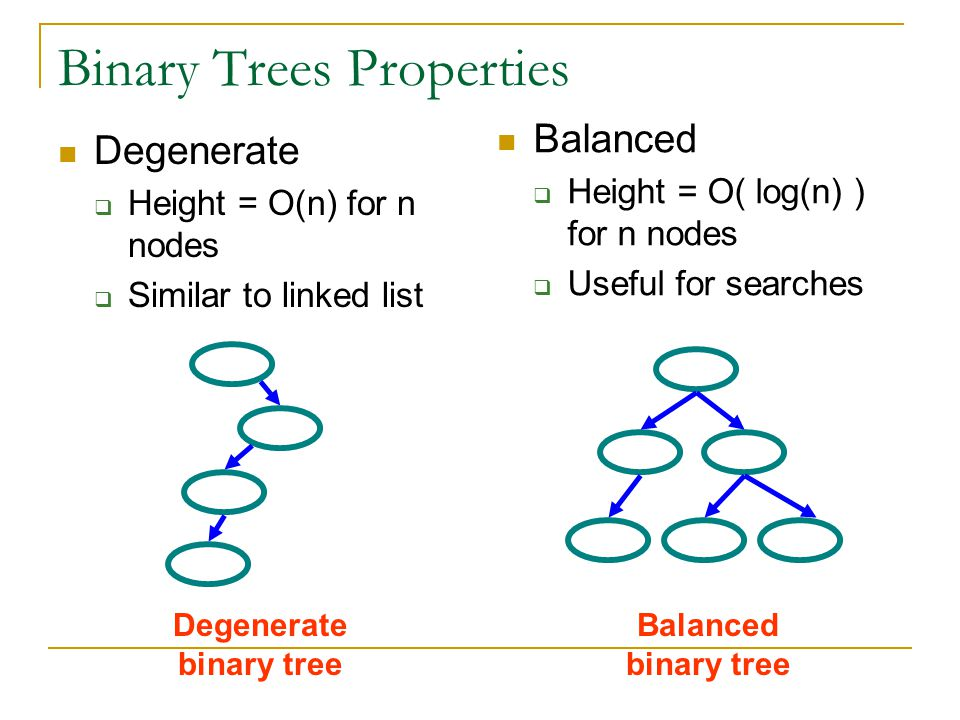 Binary Trees Properties