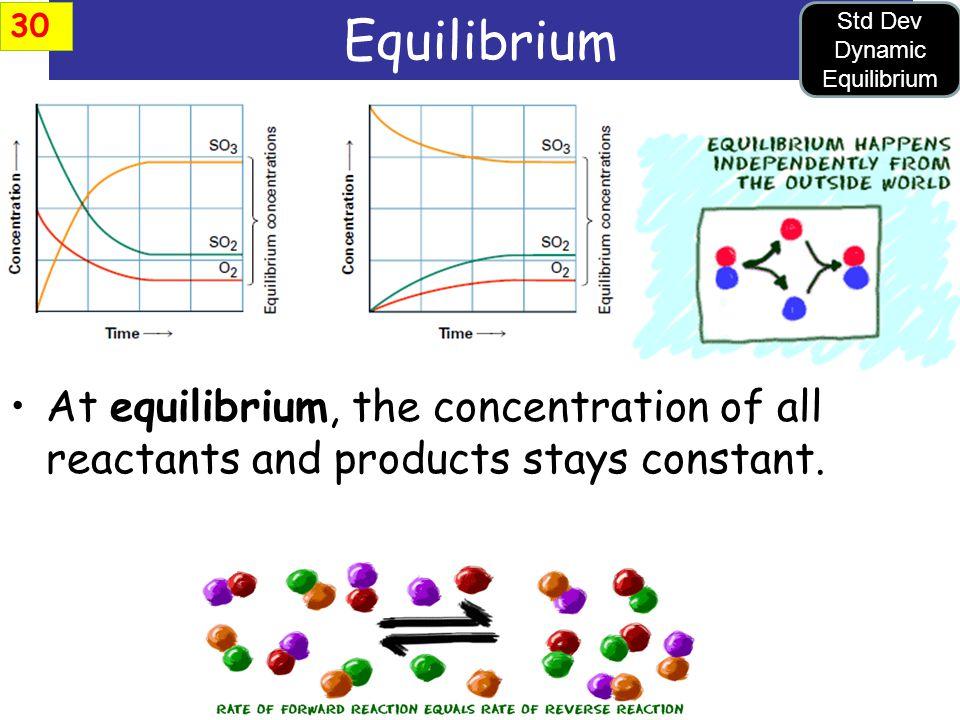 Std Dev Dynamic Equilibrium
