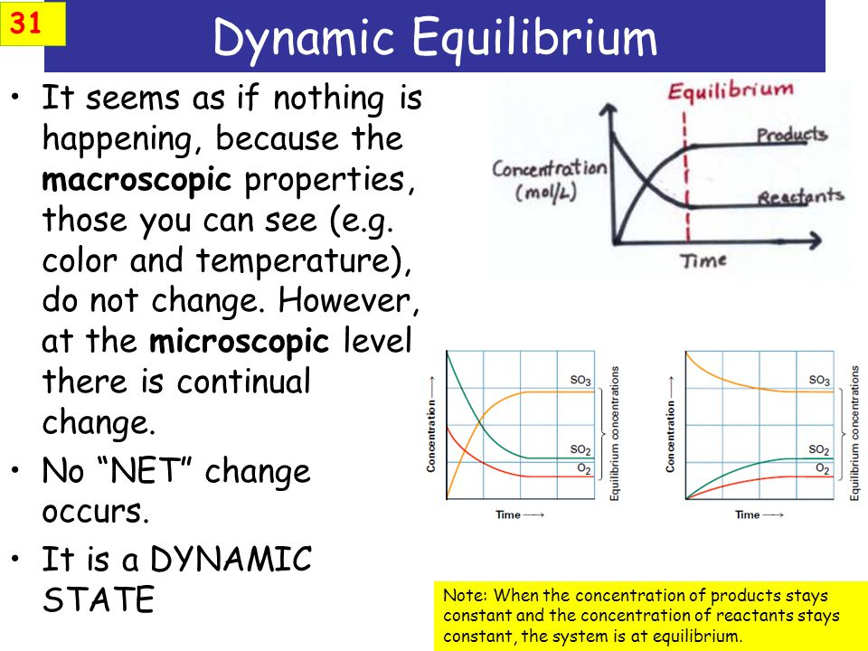 31 Dynamic Equilibrium.