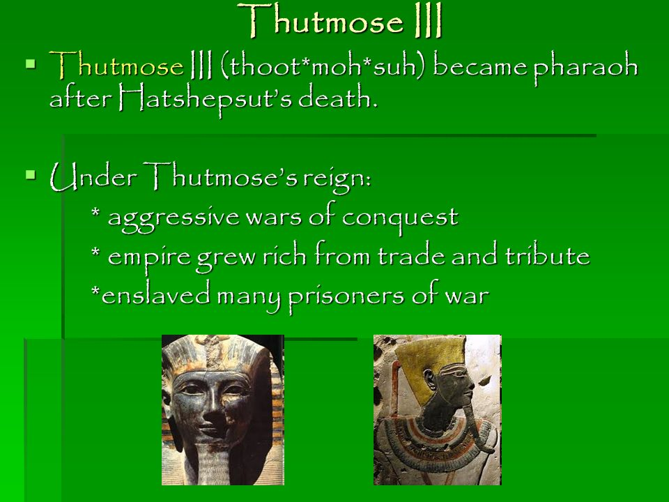Thutmose III Thutmose III (thoot*moh*suh) became pharaoh after Hatshepsut's death. Under Thutmose's reign: