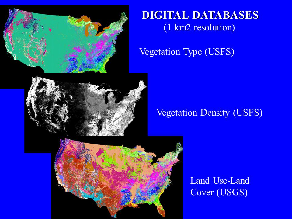 DIGITAL DATABASES (1 km2 resolution) Vegetation Type (USFS)