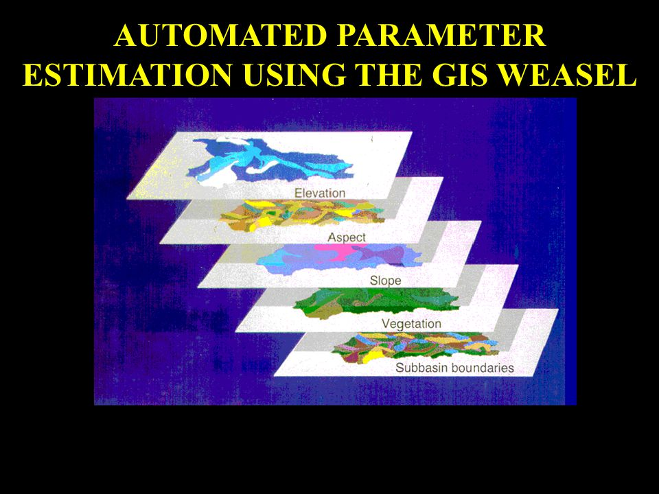 AUTOMATED PARAMETER ESTIMATION USING THE GIS WEASEL