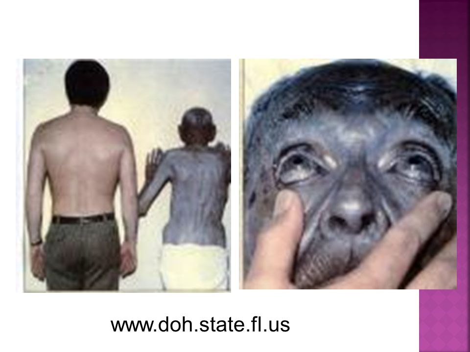 www.doh.state.fl.us