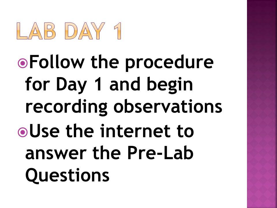 Lab Day 1 Follow the procedure for Day 1 and begin recording observations.