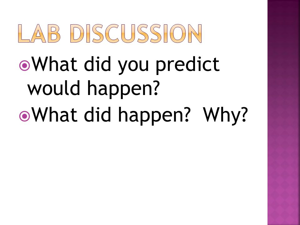 Lab Discussion What did you predict would happen