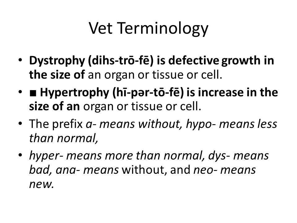 Vet Terminology Dystrophy (dihs-trō-fē) is defective growth in the size of an organ or tissue or cell.