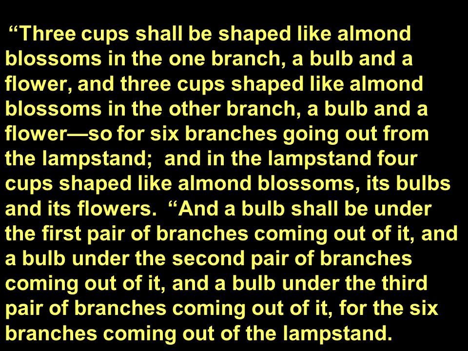 Three cups shall be shaped like almond blossoms in the one branch, a bulb and a flower, and three cups shaped like almond blossoms in the other branch, a bulb and a flower—so for six branches going out from the lampstand; and in the lampstand four cups shaped like almond blossoms, its bulbs and its flowers.