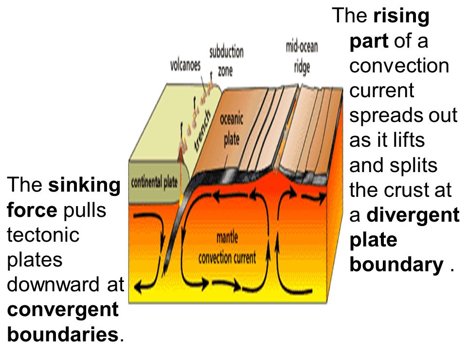 The rising part of a convection current spreads out as it lifts and splits the crust at a divergent plate boundary .