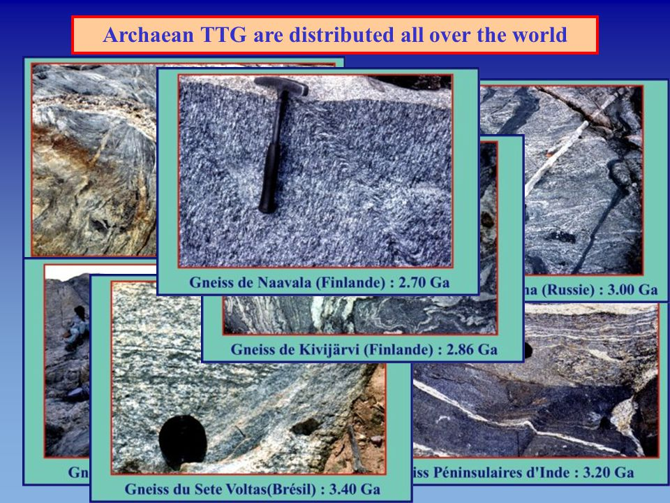 Archaean TTG are distributed all over the world