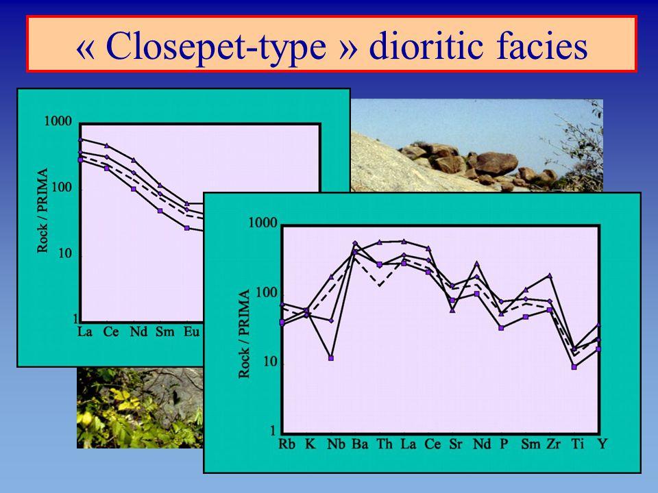 « Closepet-type » dioritic facies