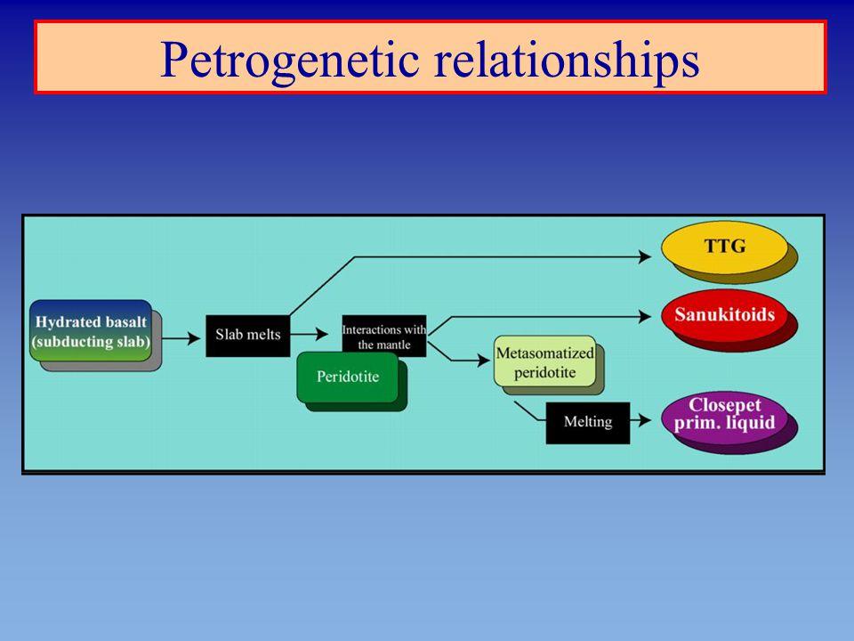 Petrogenetic relationships
