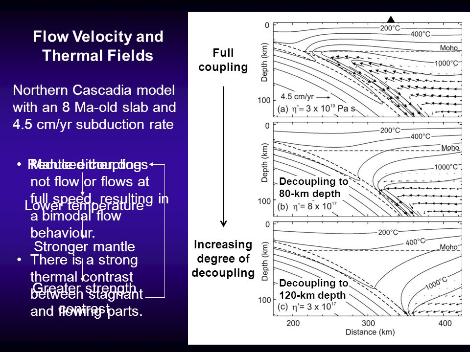 Flow Velocity and Thermal Fields