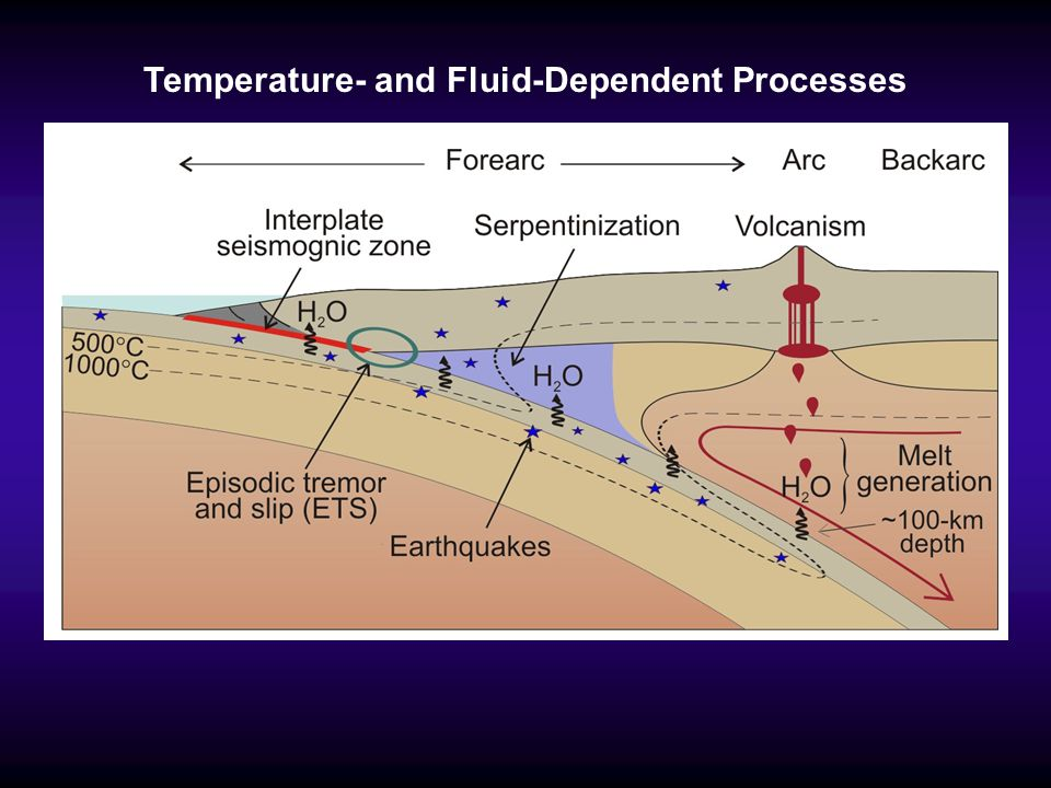 Temperature- and Fluid-Dependent Processes