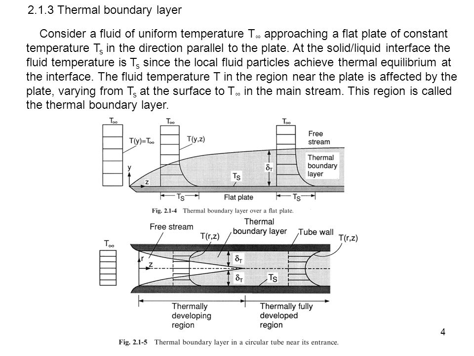 2.1.3 Thermal boundary layer