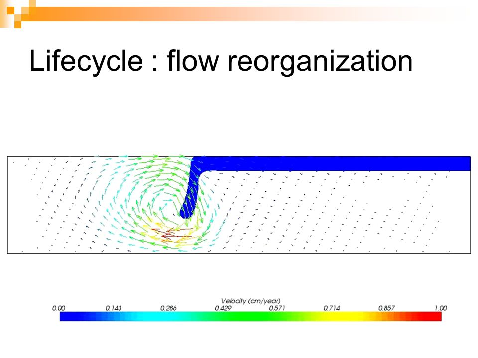 Lifecycle : flow reorganization