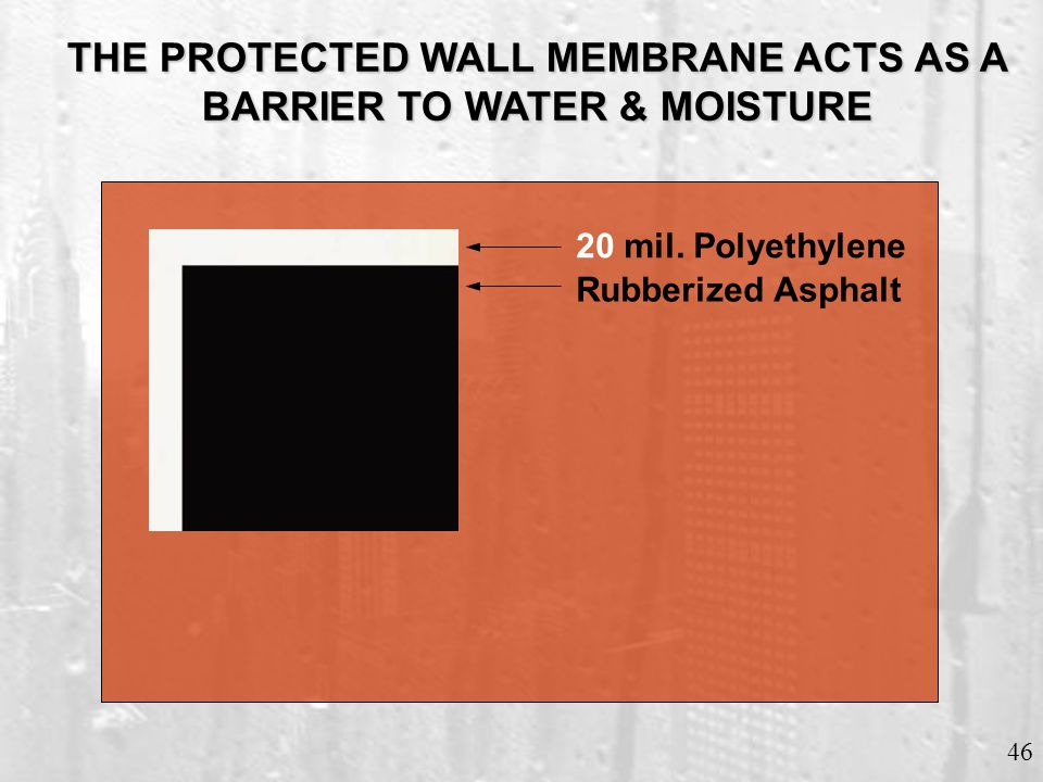 PROTECTED WALL MEMBRANE