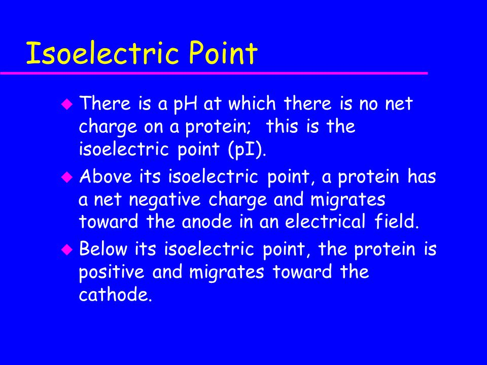 Isoelectric Point There is a pH at which there is no net charge on a protein; this is the isoelectric point (pI).
