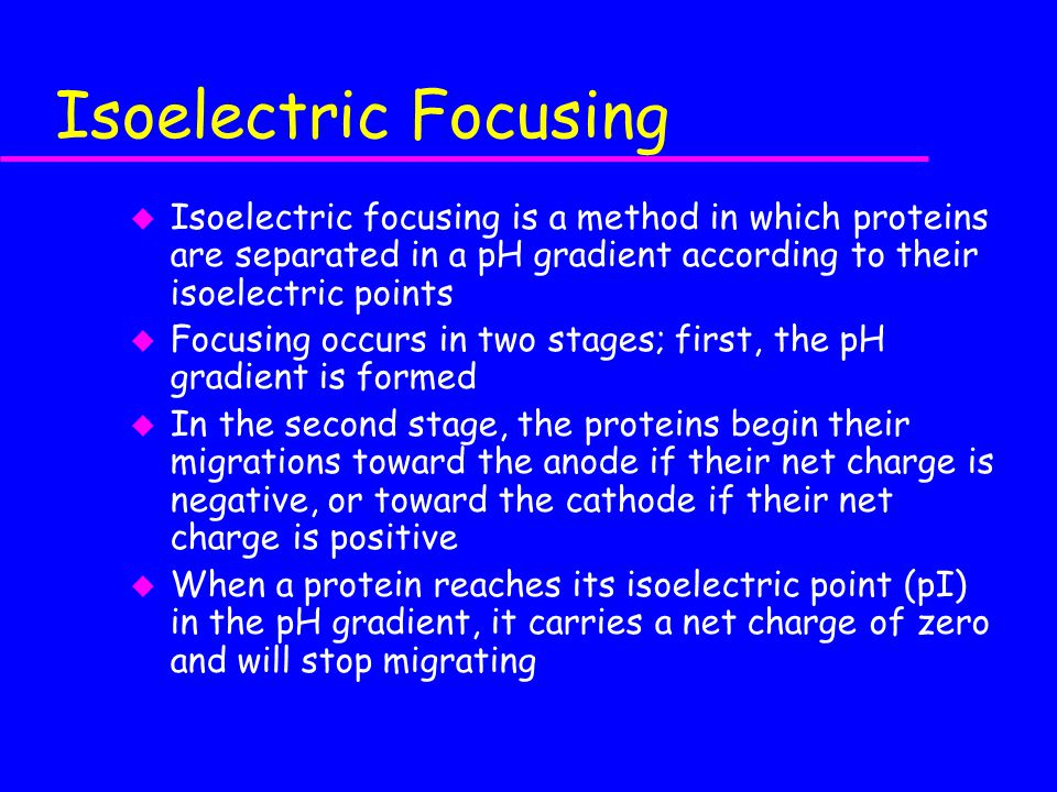 Isoelectric Focusing Isoelectric focusing is a method in which proteins are separated in a pH gradient according to their isoelectric points.