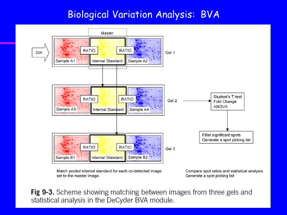 Biological Variation Analysis: BVA