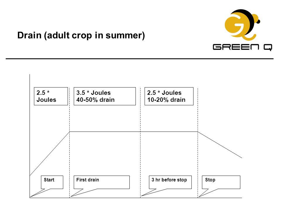 Drain (adult crop in summer)
