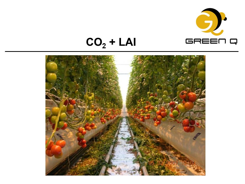 CO2 + LAI