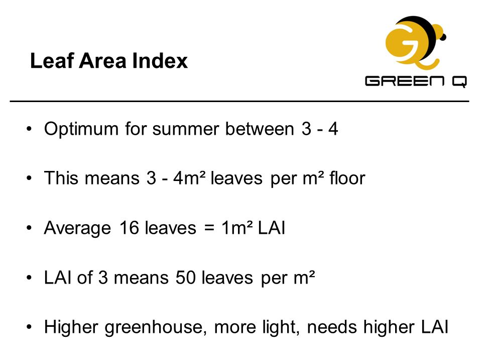Leaf Area Index Optimum for summer between 3 - 4