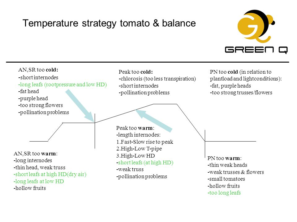Temperature strategy tomato & balance