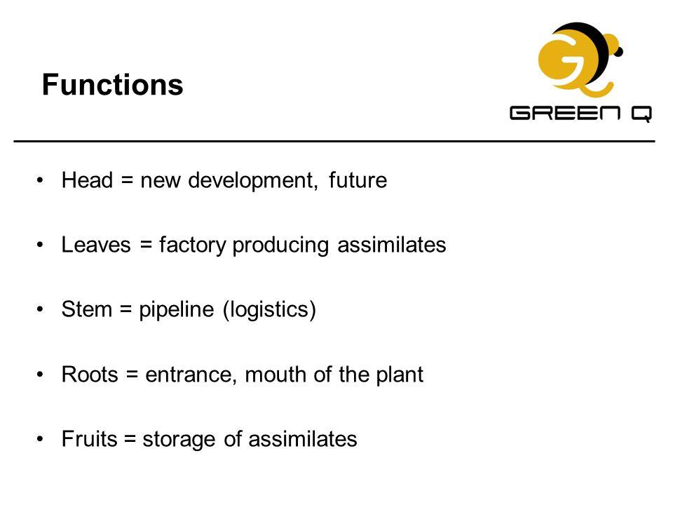 Functions Head = new development, future