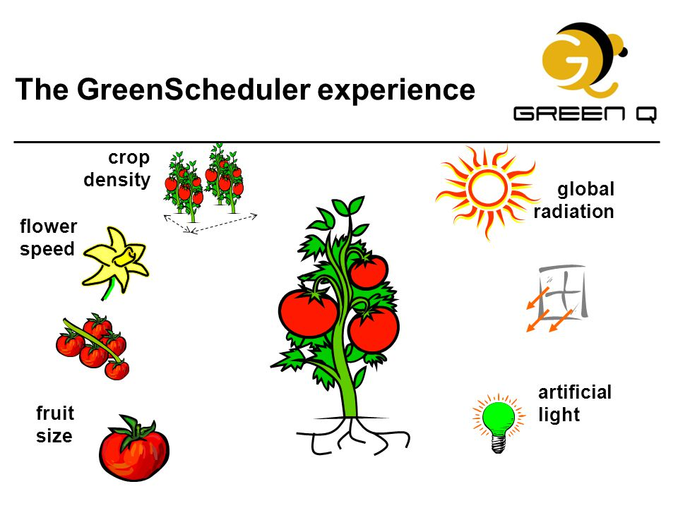The GreenScheduler experience
