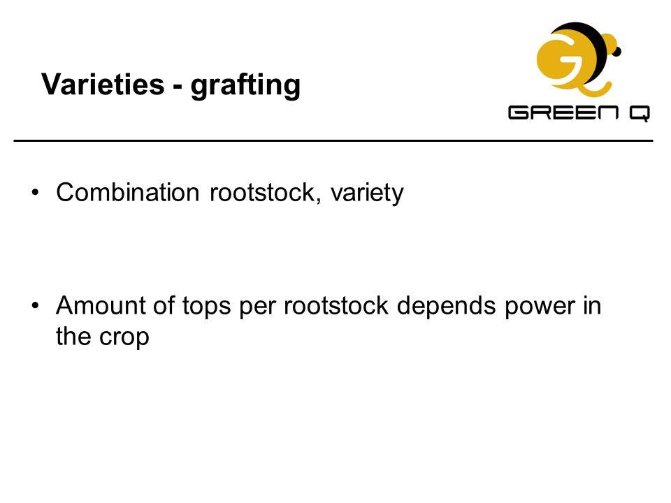Varieties - grafting Combination rootstock, variety